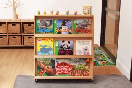 Sloping Book Shelf