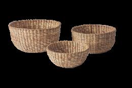 Trio Bari Bowls