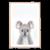 koala_kids_print_A3