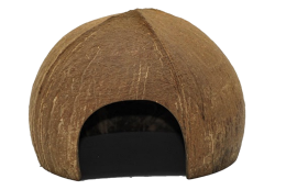 Q685_coconut_play_house.png